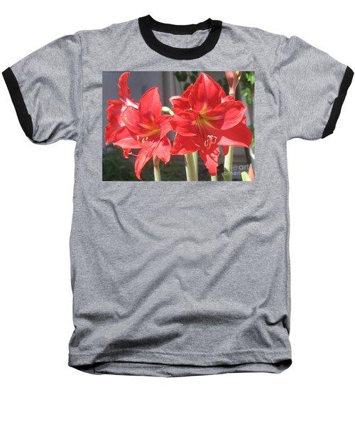 Red Amaryllis Baseball T-Shirt by Kume Bryant