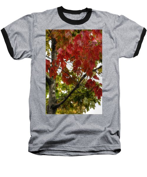 Baseball T-Shirt featuring the photograph Red And Green Prior X-mas by Michael Frank Jr