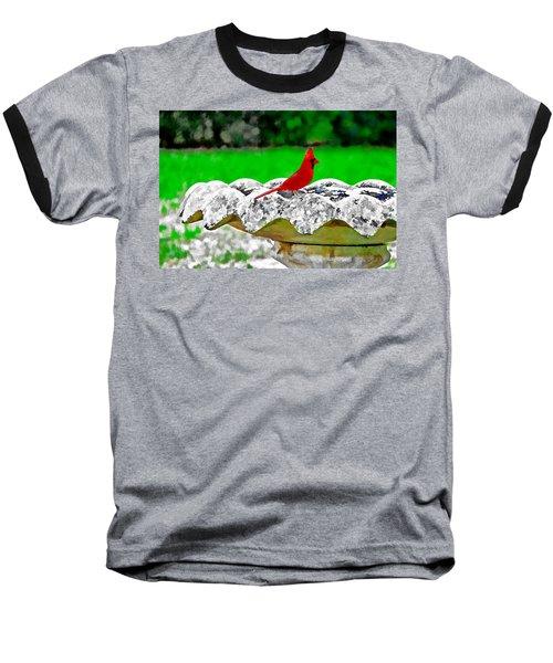 Red Bird In Bath Baseball T-Shirt by Tom Culver
