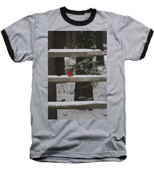 Baseball T-Shirt featuring the photograph Red Bird by Stacy C Bottoms