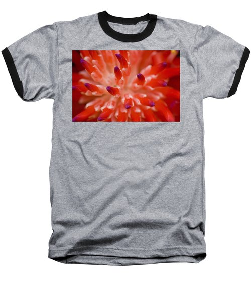 Red Bromeliad Baseball T-Shirt