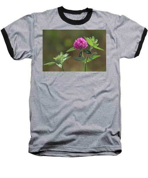 Red Clover Blossom Baseball T-Shirt