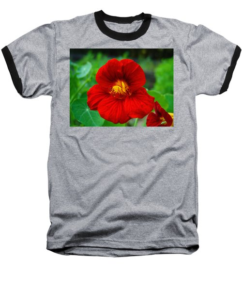 Red Daylily Baseball T-Shirt by Bill Barber