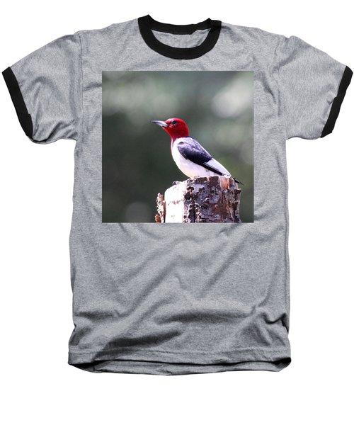 Red-headed Woodpecker - Statue Baseball T-Shirt