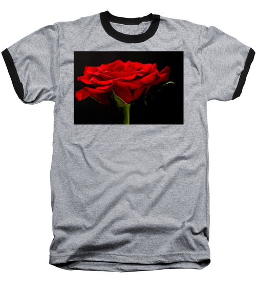 Baseball T-Shirt featuring the photograph Red Rose by Steve Purnell