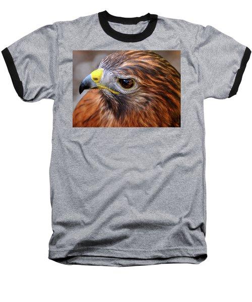 Red-tailed Hawk Close Up Baseball T-Shirt