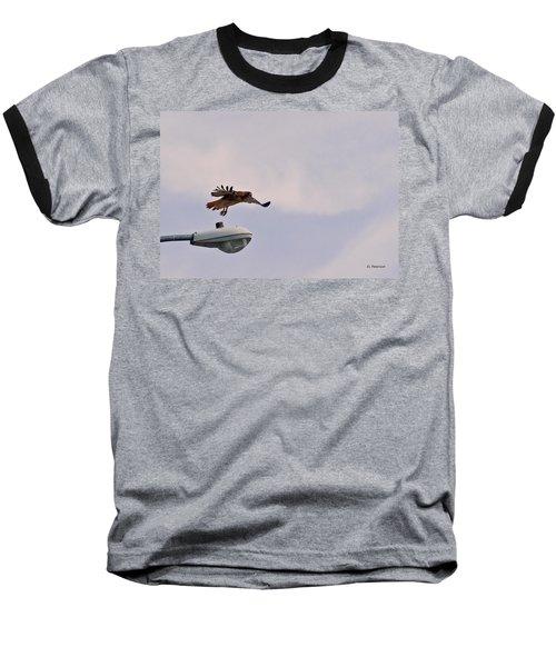 Red-tailed Hawk In Flight Baseball T-Shirt