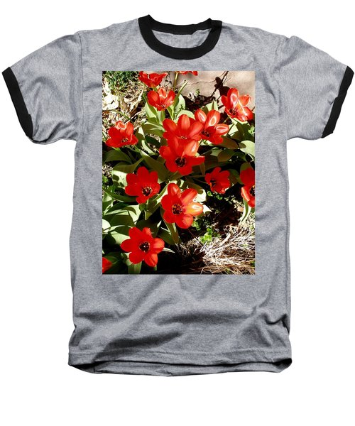 Baseball T-Shirt featuring the photograph Red Tulips by David Pantuso