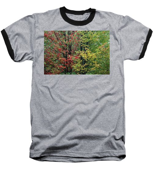 Red Yellow And Green Leaves Baseball T-Shirt