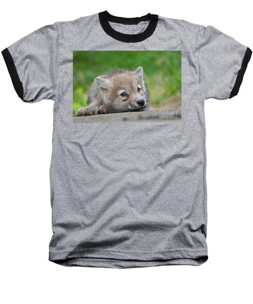 Resting Pup Baseball T-Shirt