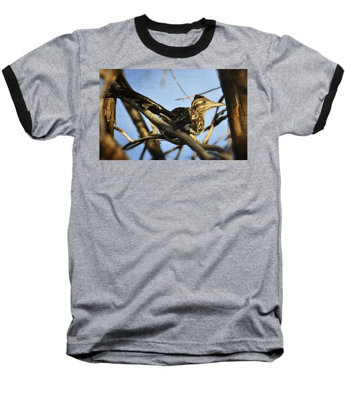Roadrunner Up A Tree Baseball T-Shirt by Saija  Lehtonen