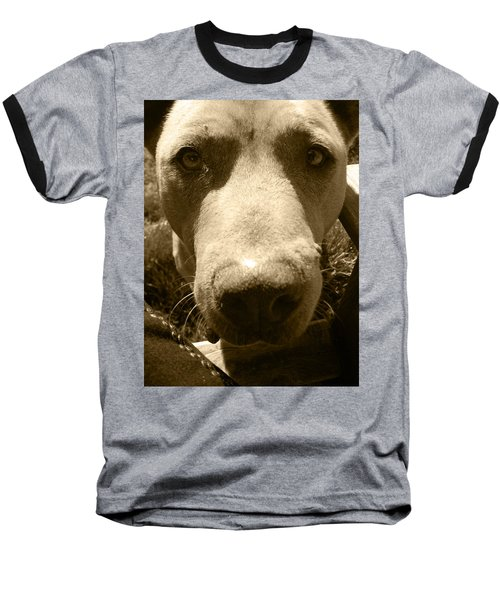 Roscoe Pitbull Eyes Baseball T-Shirt by Kym Backland