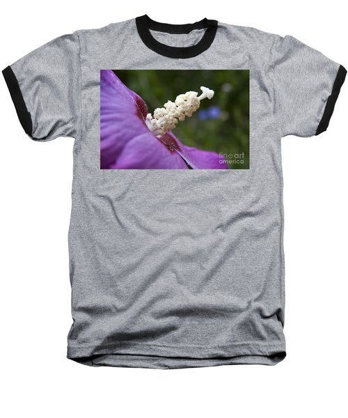 Baseball T-Shirt featuring the photograph Rose Of Sharon by Jeannette Hunt