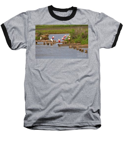 Roseate Spoonbills And Snowy Egrets Baseball T-Shirt by Louise Heusinkveld