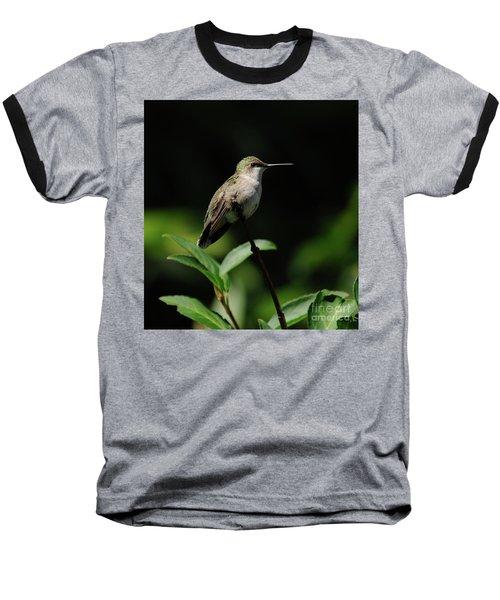 Ruby-throated Hummingbird Female Baseball T-Shirt