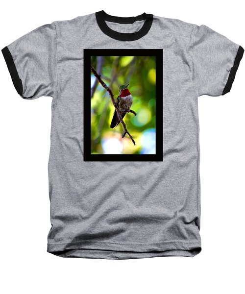 Ruby Throated Hummingbird Baseball T-Shirt by Susanne Still