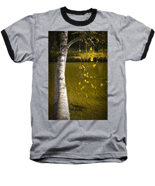 Salmon During The Fall Migration In The Little Manistee River In Michigan No. 0887 Baseball T-Shirt