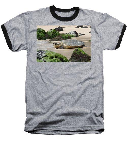Sea Turtle 1 Baseball T-Shirt