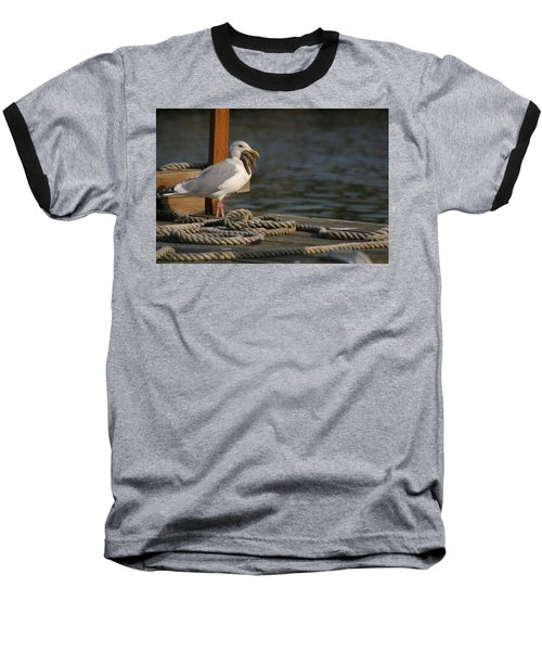 Baseball T-Shirt featuring the photograph Seagull Swallows Starfish by Kym Backland