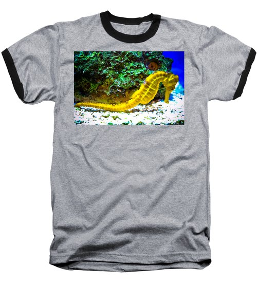 Baseball T-Shirt featuring the photograph Yellow Seahorse by Toni Hopper