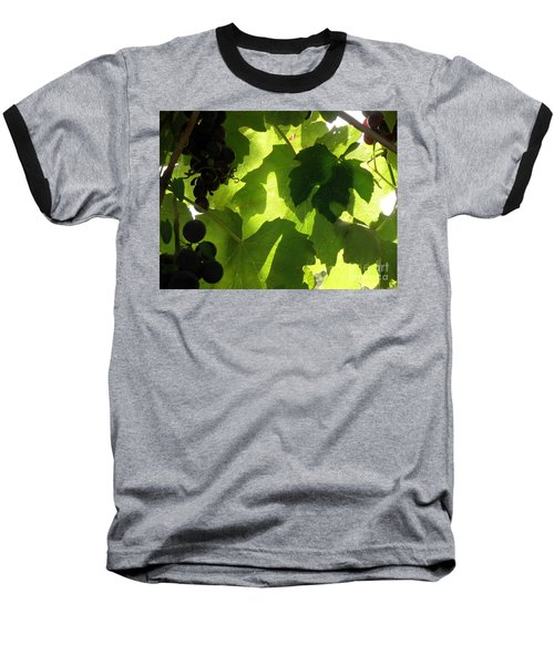 Shadow Dancing Grapes Baseball T-Shirt by Lainie Wrightson