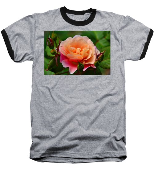 Sherbet Rose Baseball T-Shirt by Bonnie Myszka