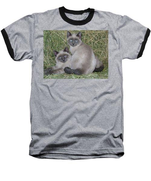 Siamese Haystack Baseball T-Shirt