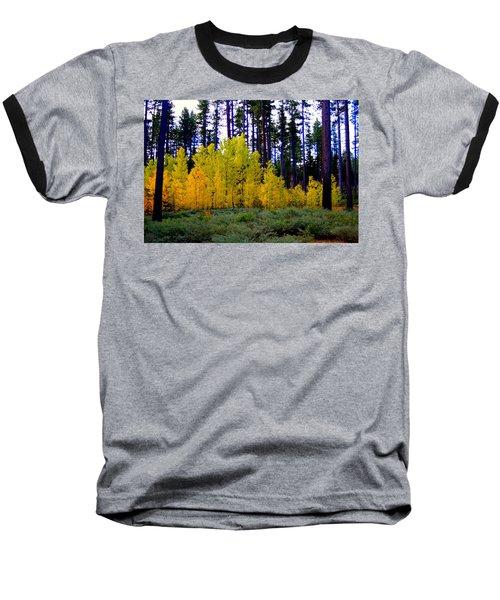 Sierra Forest Baseball T-Shirt