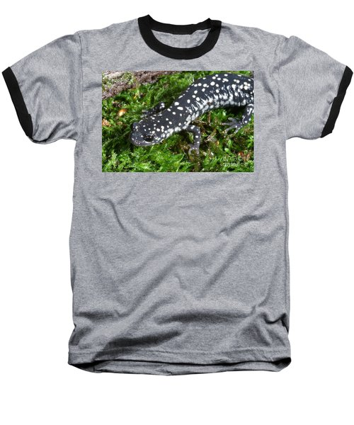 Slimy Salamander Baseball T-Shirt by Ted Kinsman