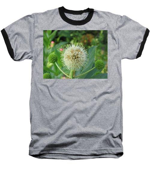 Snakeroot Rider Baseball T-Shirt