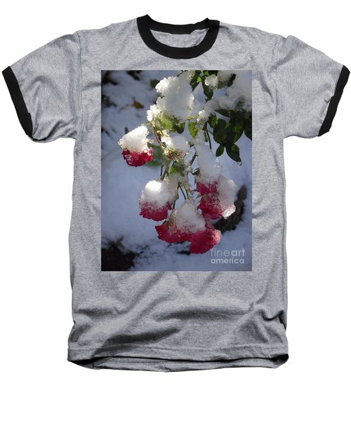 Snow Covered Roses Baseball T-Shirt