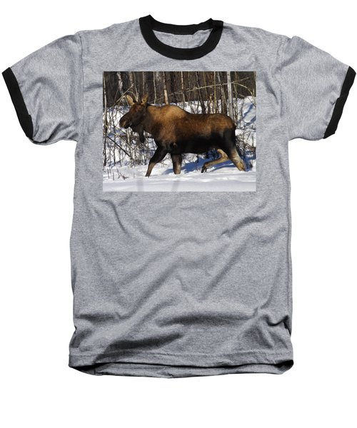 Baseball T-Shirt featuring the photograph Snow Moose by Doug Lloyd