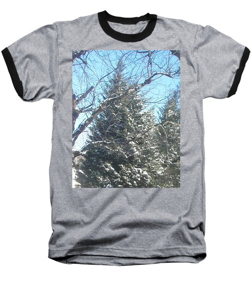 Baseball T-Shirt featuring the photograph Snow Sprinkled Pine by Pamela Hyde Wilson