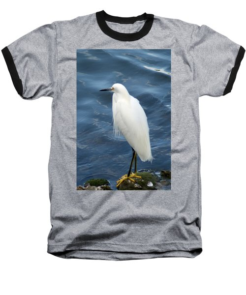 Snowy Egret 1 Baseball T-Shirt by Joe Faherty