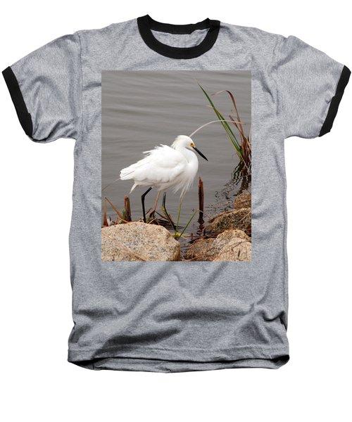Snowy Egret Baseball T-Shirt by Kay Lovingood