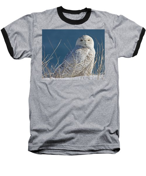 Snowy Owl Profile Baseball T-Shirt