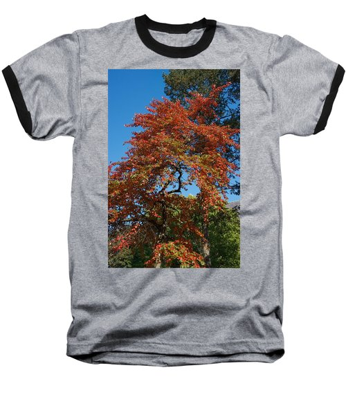 Baseball T-Shirt featuring the photograph Soaring Fall by Joseph Yarbrough