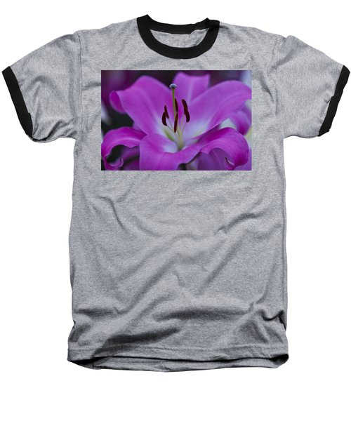 Soft Purple Baseball T-Shirt