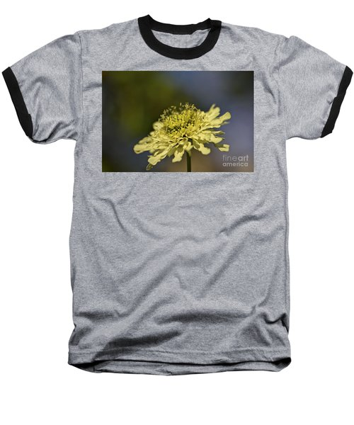 Baseball T-Shirt featuring the photograph Soft Yellow. by Clare Bambers