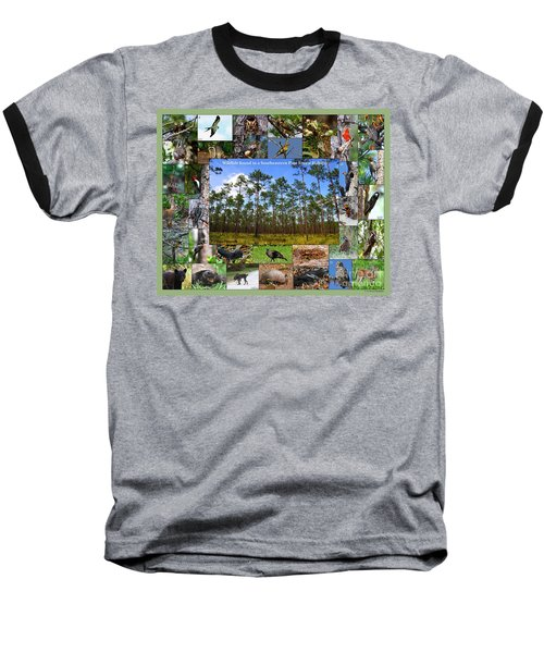 Southeastern Pine Forest Wildlife Poster Baseball T-Shirt