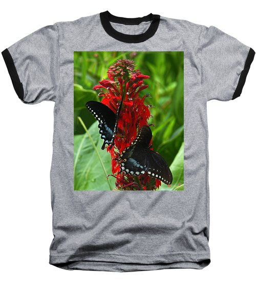 Spicebush Swallowtails Visiting Cardinal Lobelia Din041 Baseball T-Shirt