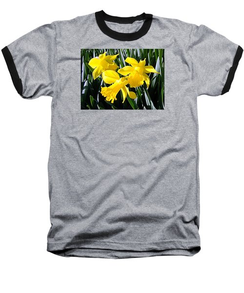 Spring 2012 Baseball T-Shirt by Nick Kloepping