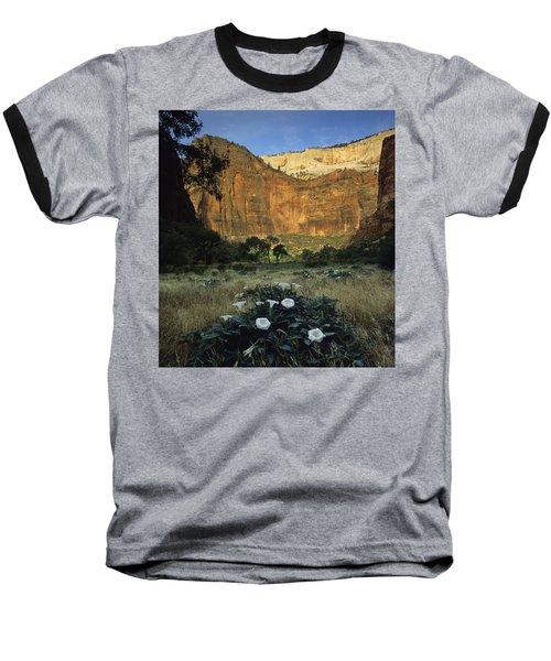 Spring At Big Bend Baseball T-Shirt