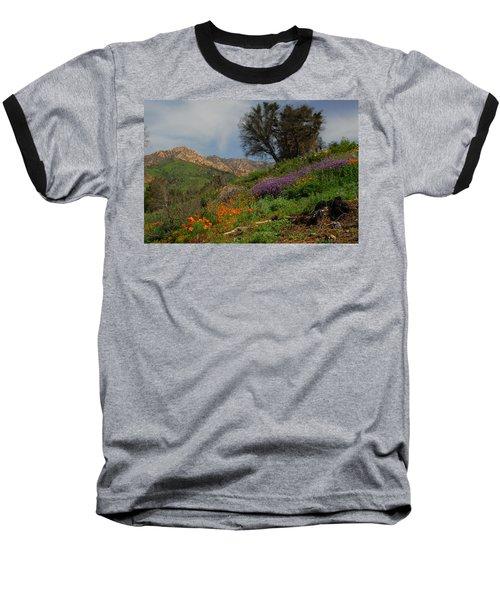 Spring In Santa Barbara Baseball T-Shirt by Lynn Bauer