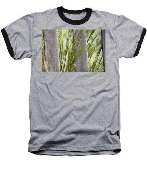 Spring Time In The Meadow Baseball T-Shirt by Amy Gallagher