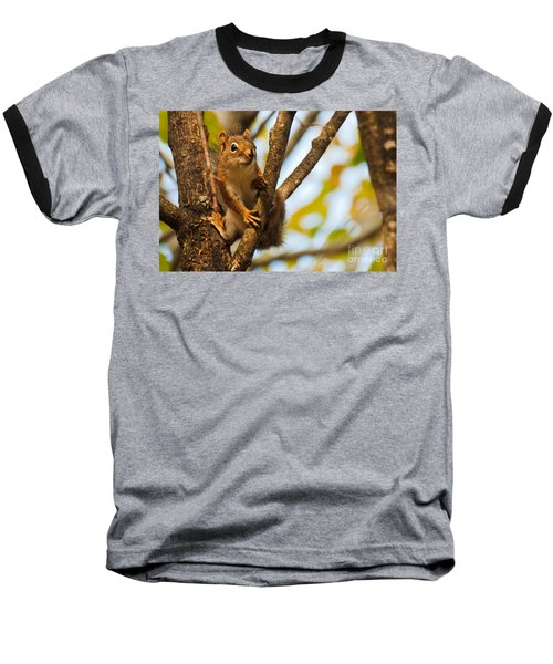Baseball T-Shirt featuring the photograph Squirrel On High by Cheryl Baxter