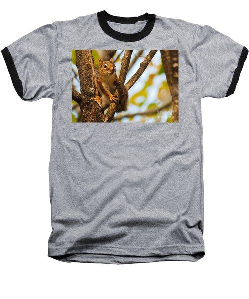 Squirrel On High Baseball T-Shirt by Cheryl Baxter