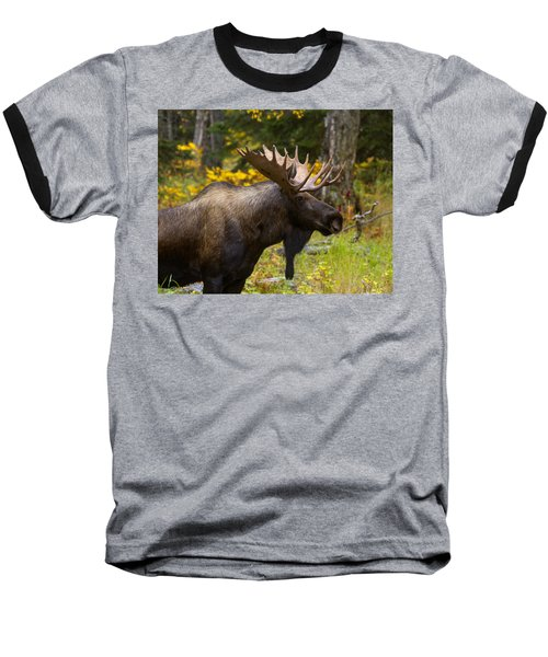 Baseball T-Shirt featuring the photograph Standing Proud by Doug Lloyd