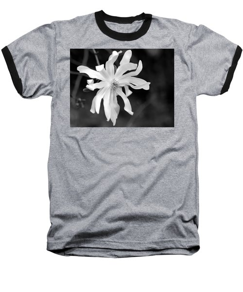 Star Magnolia Baseball T-Shirt by Lisa Phillips