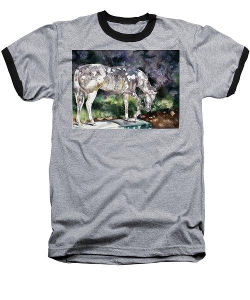 Stonerside Baseball T-Shirt